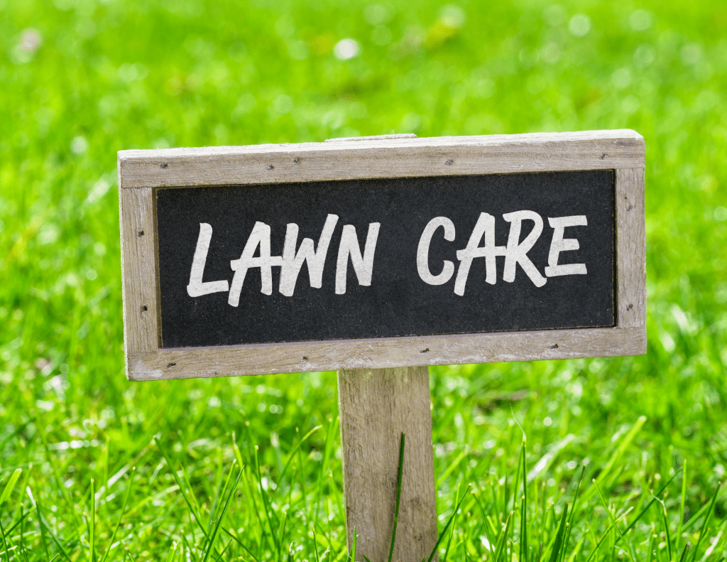 Landscaping and lawn care is high return home improvement