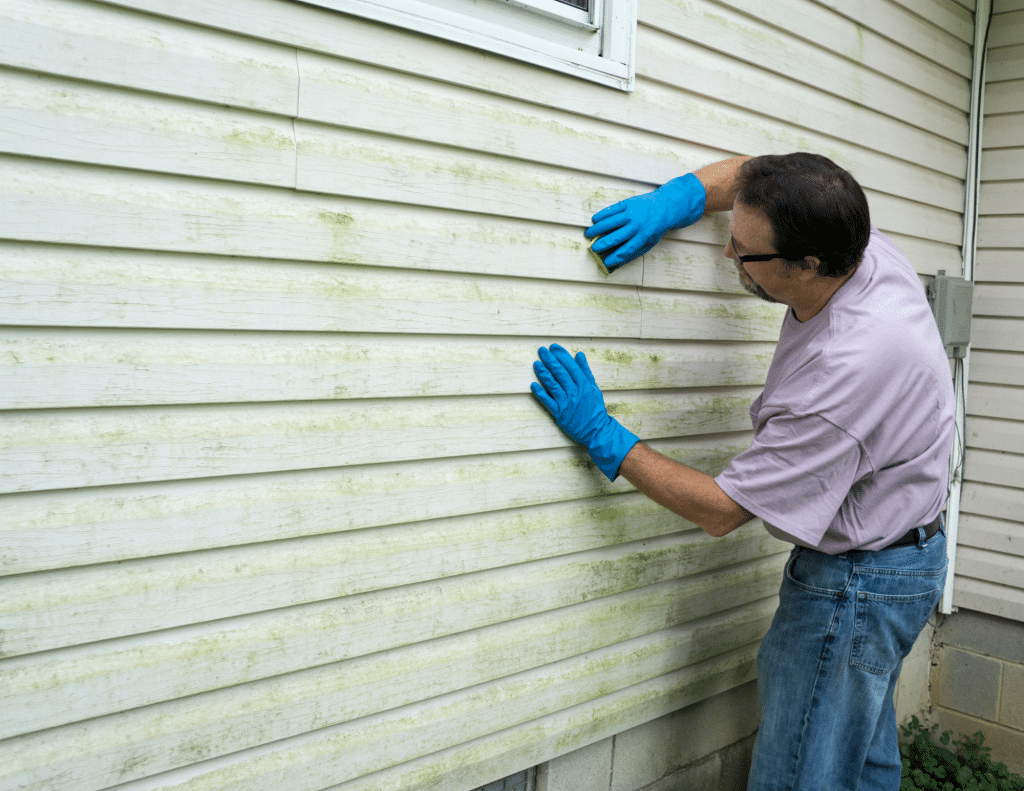 Washing or replacing vinyl siding is a high value home improvement
