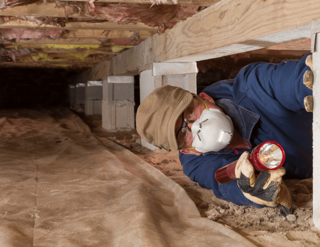 cleaning your crawl space